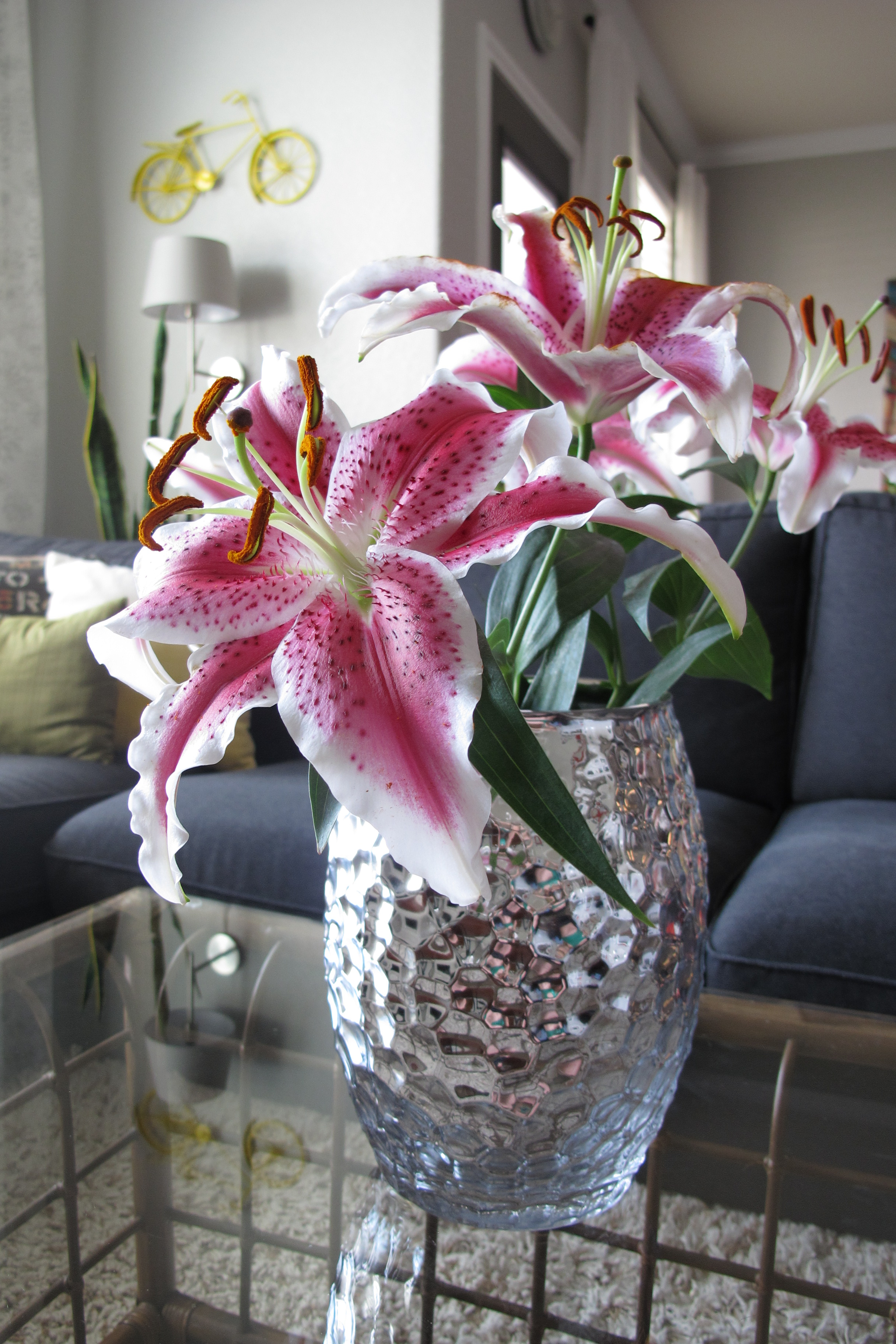 Flower Power Lovely Lilies Operation Home