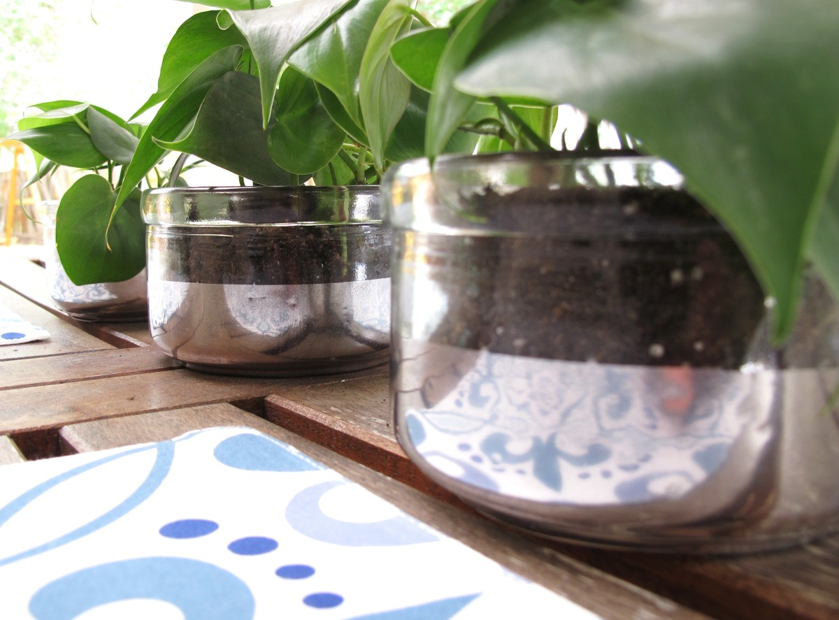 Easy Mirrored Planters - Monthly DIY Challenge